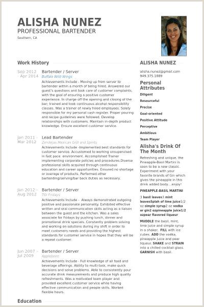Sample Resume for Bartending Inspirational Sample Bartender
