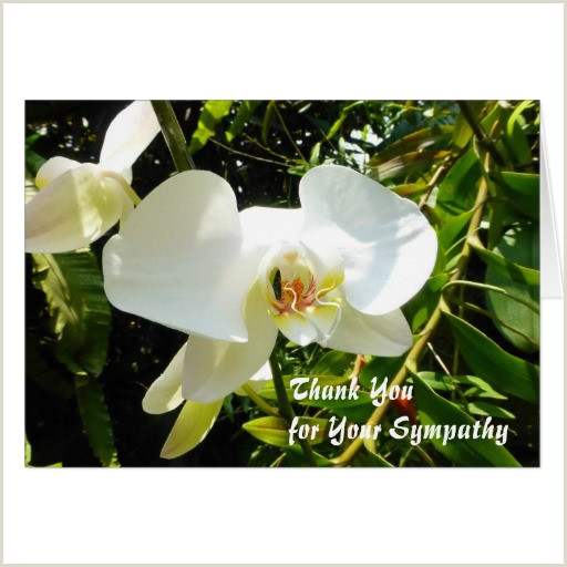 Examples Of Thank You Notes for Funeral Flowers Writing Condolence Thank You Notes
