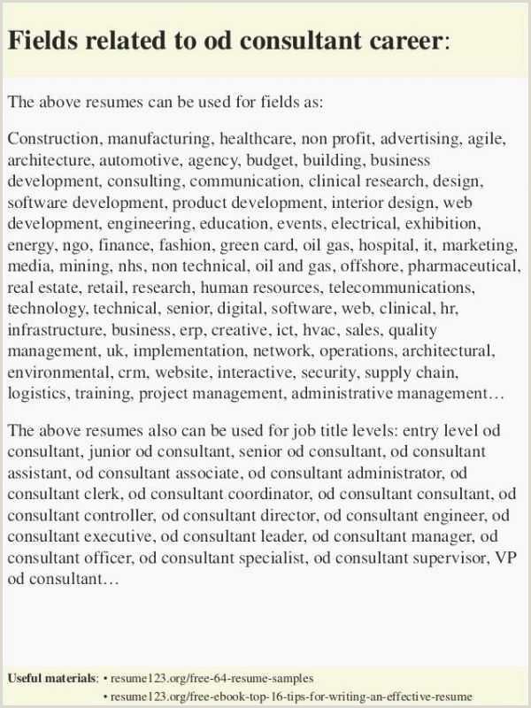 Entry Level Program Coordinator Cover Letter
