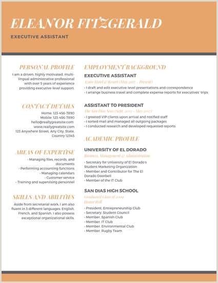 Executive assistant Resume 2015 orange Professional Executive assistant Resume Templates