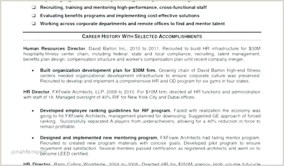 Executive Director Resume Sample Non Profit Director Profile Template Non Profit Executive Director