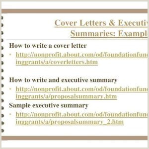 Executive Director Cover Letter Non Profit Examples Resume