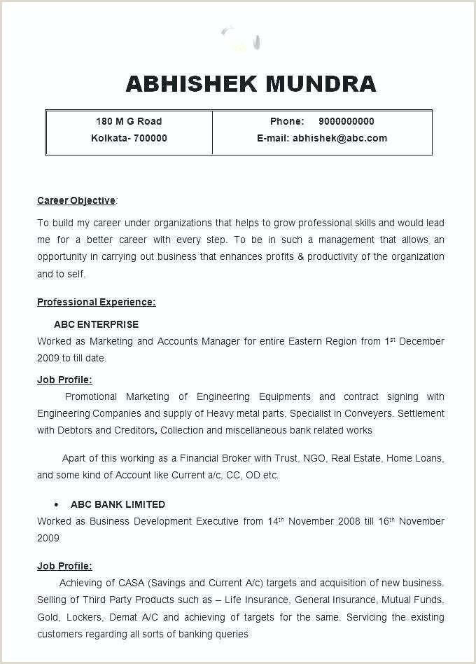 senior executive resume template