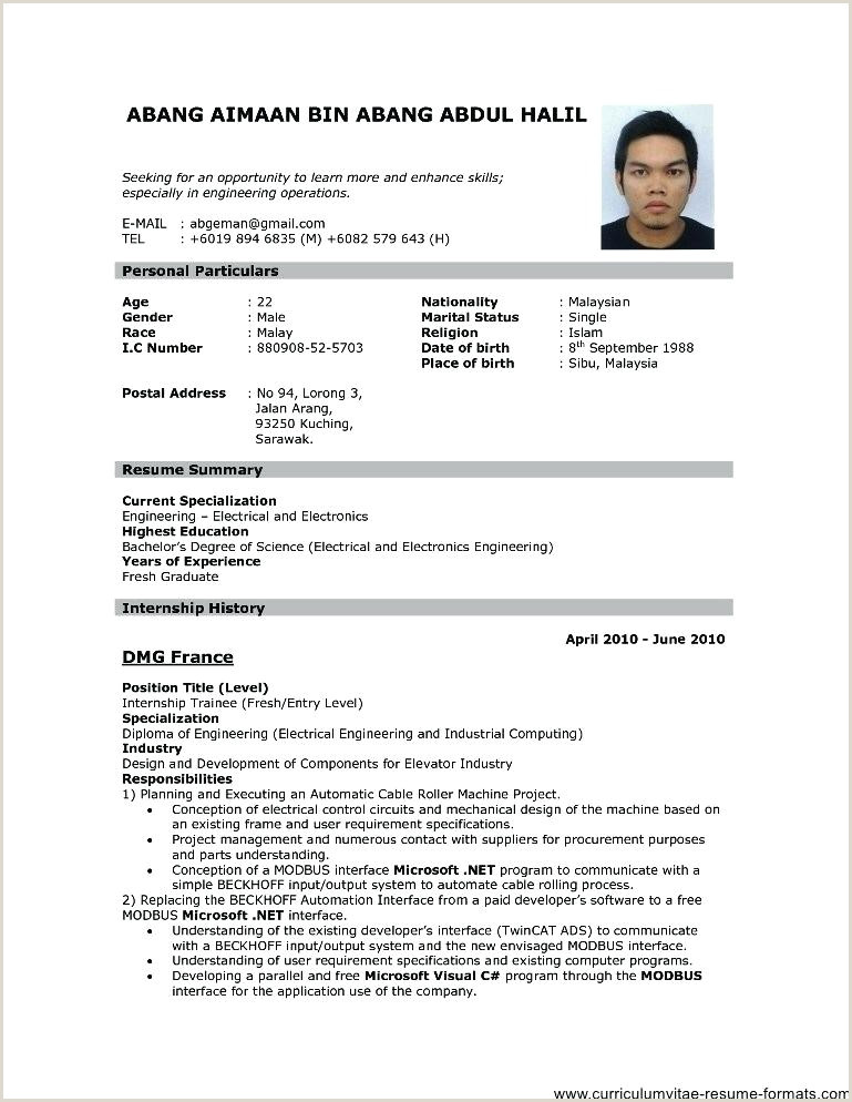 Exemple Cv Pdf Download Ficial Resume format Download Cv Template Pdf Examples