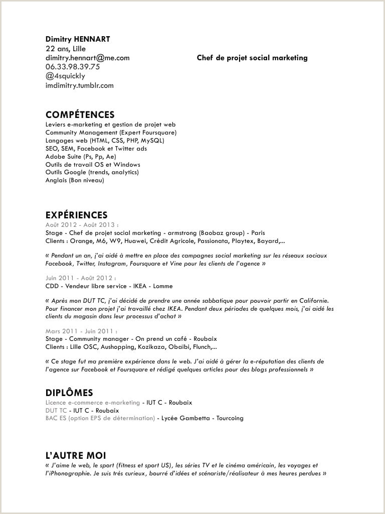 Exemple De Bon Cv Pdf France Cv Of Resume Sample