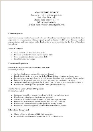 Exemple De Curriculum Vitae En Anglais Pdf 13 Cv En Anglais Exemple Pdf