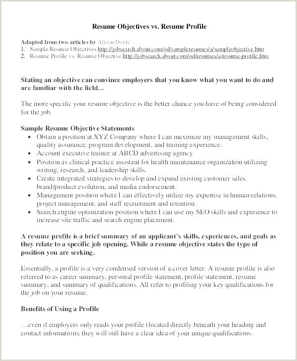 Profiles Examples for Resumes Sample Profil Cv Exemple