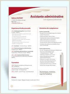 Exemple De Cv assistant Commercial Et Administratif 27 Meilleures Images Du Tableau Mod¨le Cv Word En 2018
