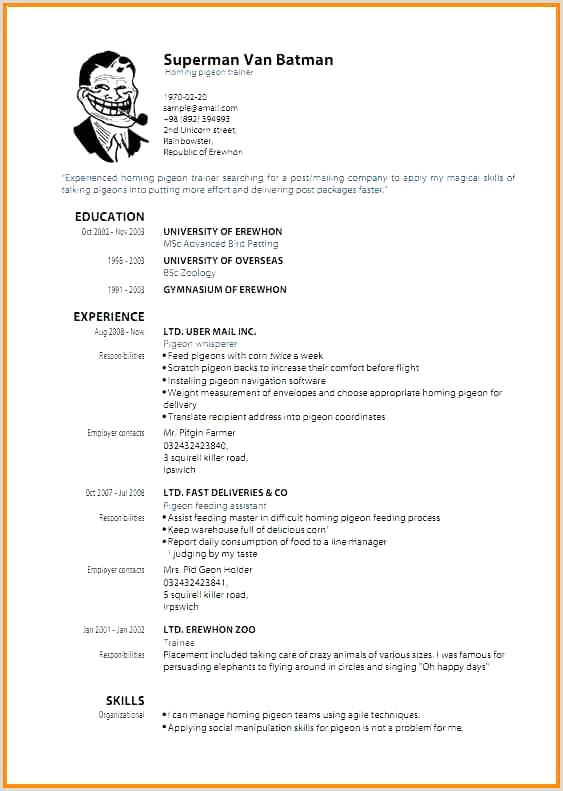 44 Simple Application Pour Faire Un Cv Worldindoorlacrosse