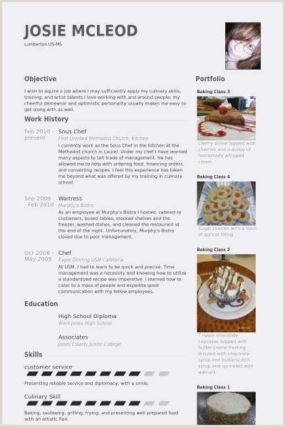 Emploi Chef De Cuisine Modele Cv Cuisinier Modifiable Resume