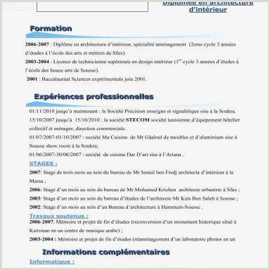Savantjournals CV Emploi Modele