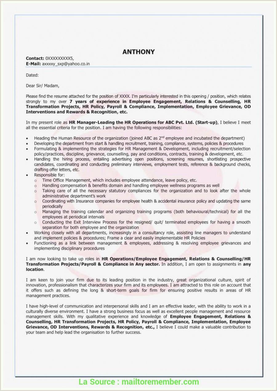 Exemple De Cv Bac Pro Commerce Achevée Lettre De Motivation Licence Transport Logistique