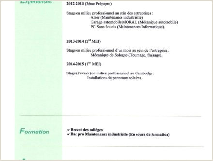 Exemple De Cv Bac Pro Commerce Exemple De Cv Bac Pro Merce