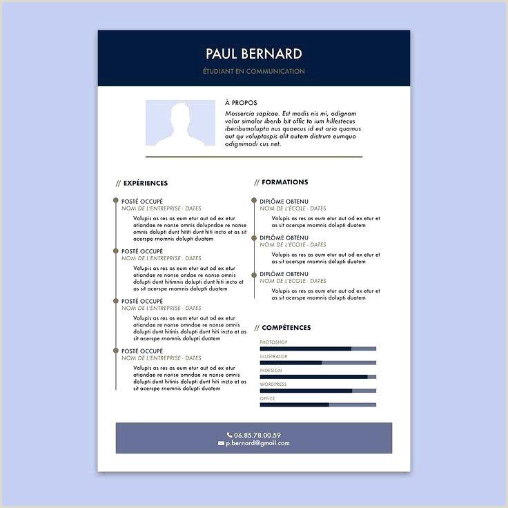 Cv Seconde Bac Pro Agréable Cv Bac Pro assp Rapport De Stage
