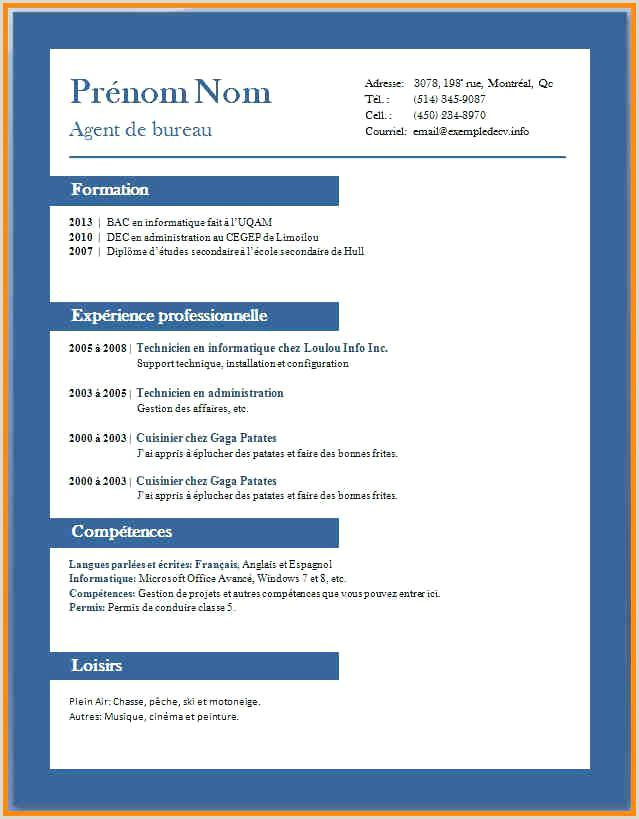 Modele cv word simple