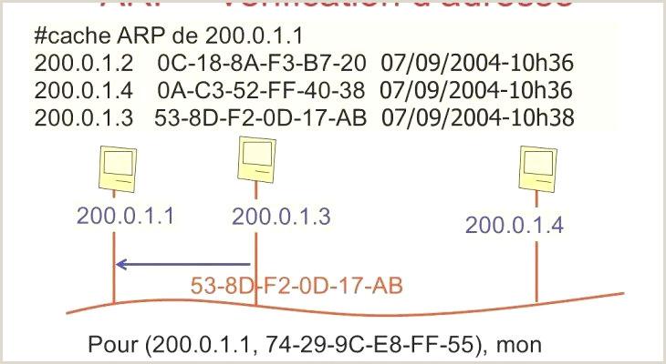 43 Exemple Telecharger Cv A Remplir Gratuit