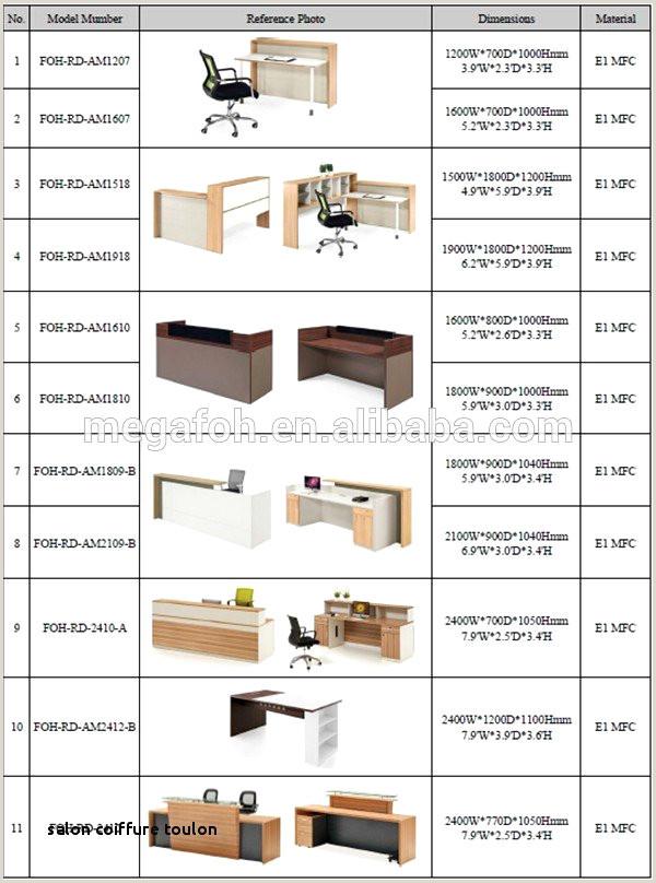 Exemple De Cv Belge Salon De Coiffure Valence Exemple De Cv original Serveuse
