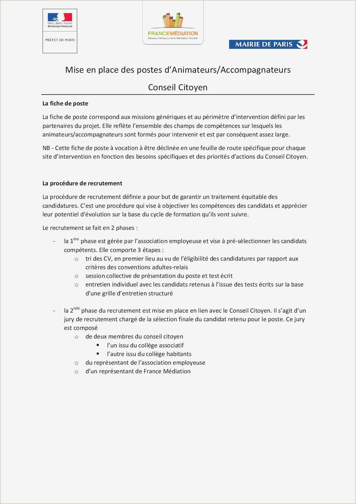 Modele De Lettre D Objectif Professionnel Modele De Cv Agent