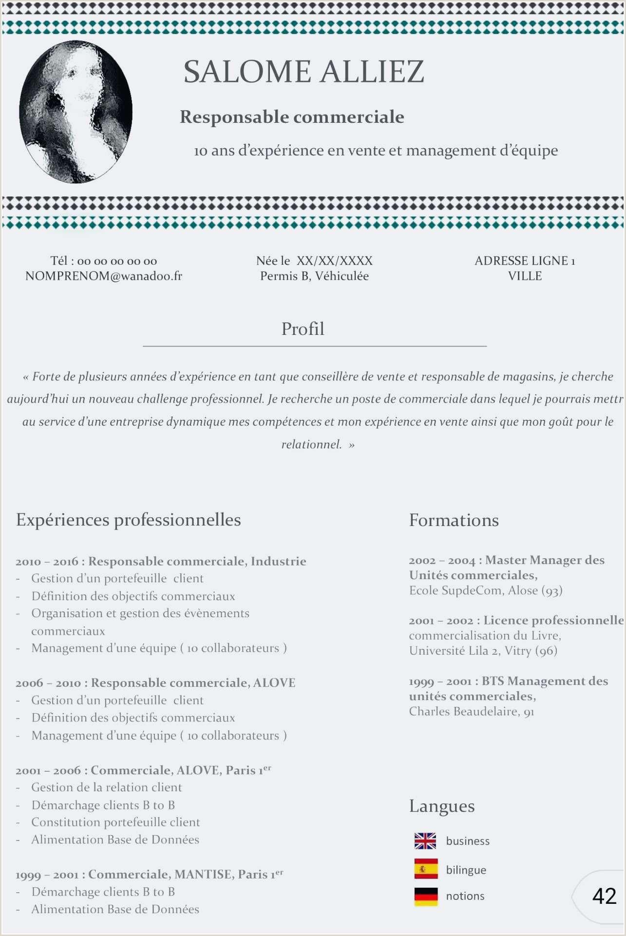 Nouveau Exemple Cv Chef De Projet Marque 12 Lovely Cv