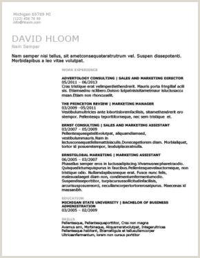 Exemple De Cv Chronologique Pdf Exemple De Cv Licence Fondamentale Nouveau Cv Chronologique