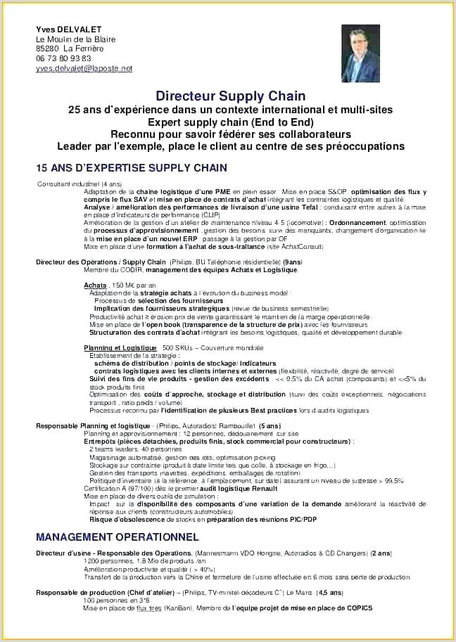 Exemple De Cv Chronologique Pdf Lettre De Motivation Responsable Magasin Nouveau Cv