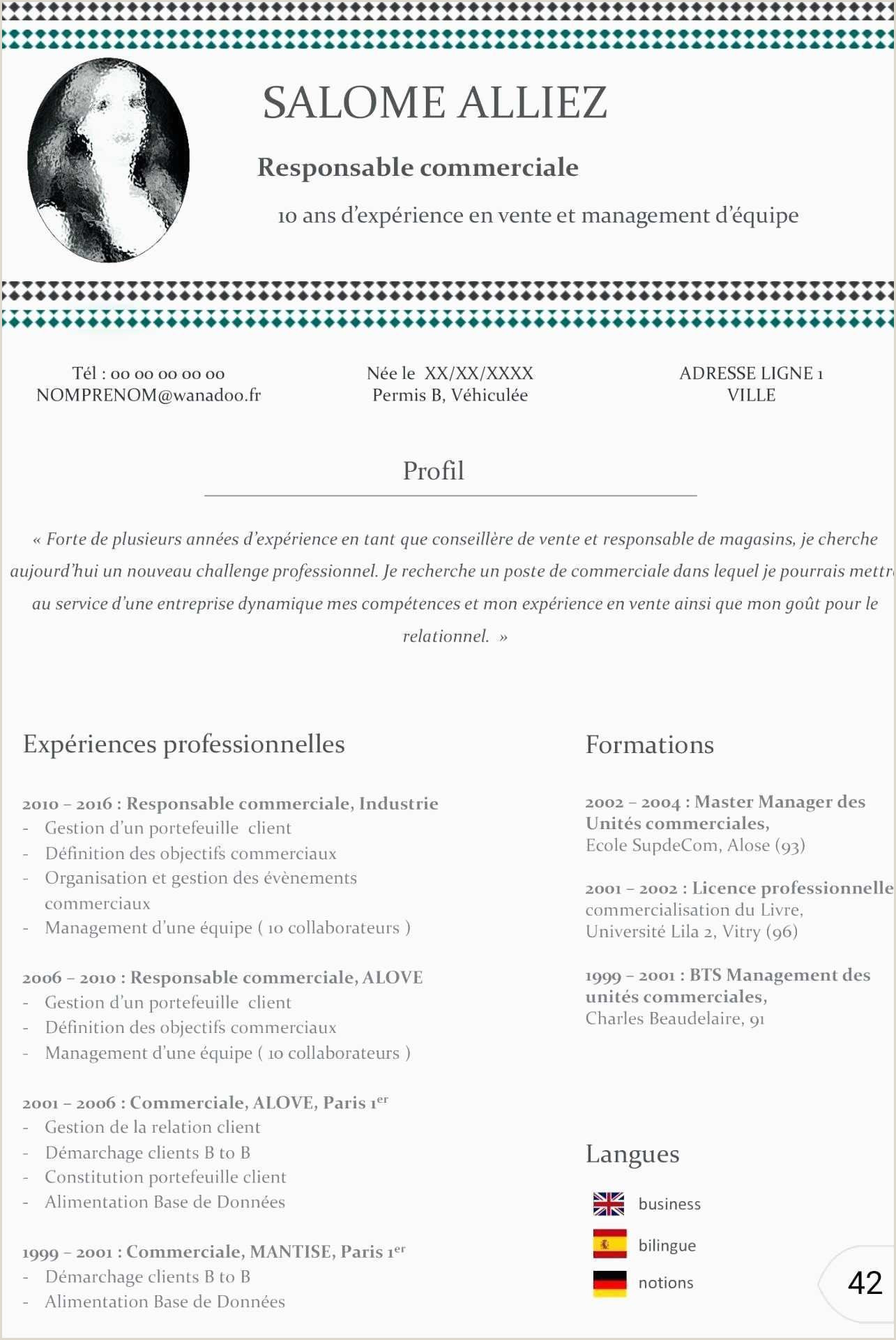 Exemple De Cv Commercial Pdf Cvresponsable Mercialbilingueupcvup Travail Mercial