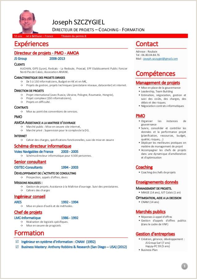 Exemple De Cv Compétences 60 Beau S De Exemple Cv Pétences