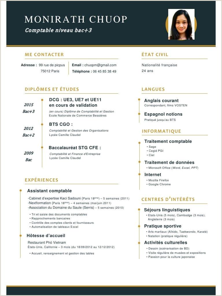 Exemple De Cv Comptable Pdf Cv Pour Bts Ptabilité Et Gestion
