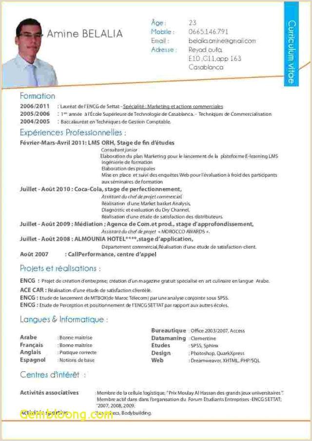 Exemple De Cv De Stage Au Maroc Pdf Cv Example Professor