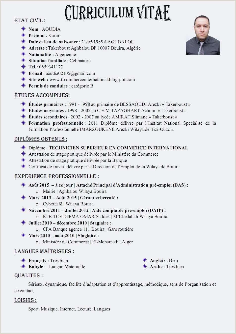 Exemple De Cv De Travail Pdf Luxe Cv Fran C3 A7ais Entreprendre Ensemble Pdf Outils