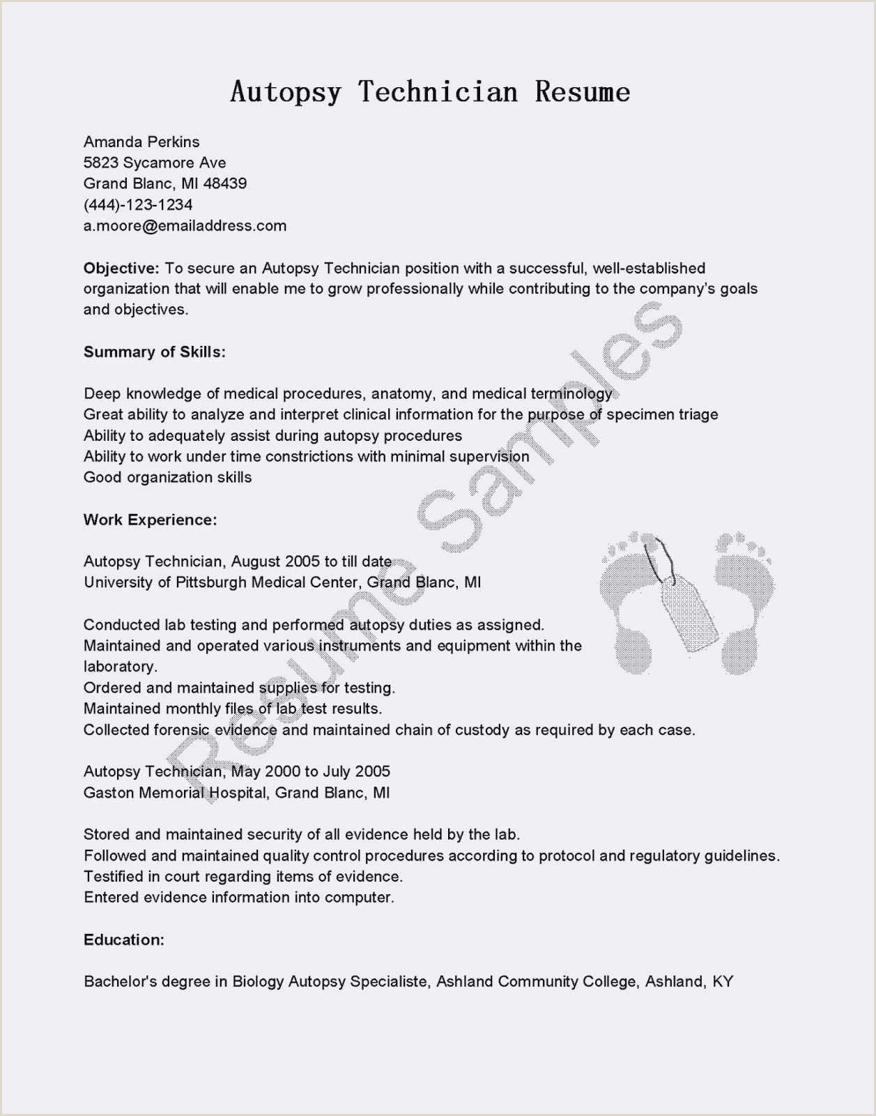 Exemple De Cv Debutant Emploi Job Elegant Cv Ide Exemple How Write A Resume for