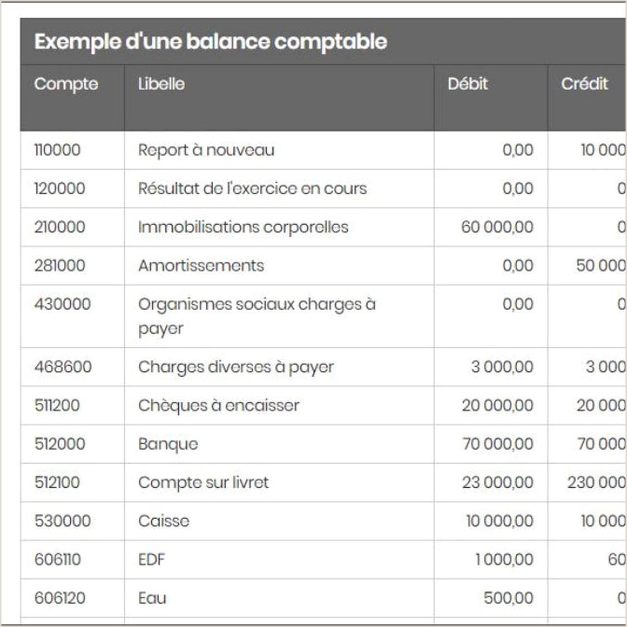Exemple De Cv Dun Comptable Balance Ptable Définition Et Exemple