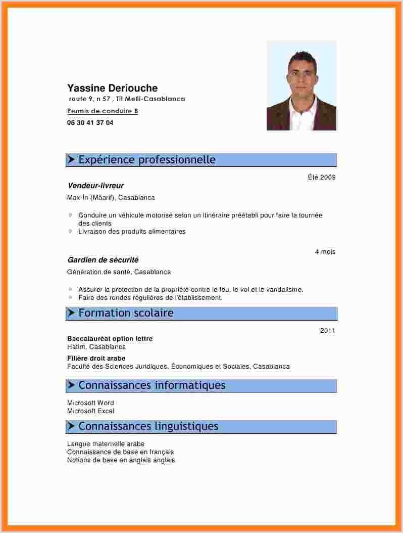 Exemple De Cv En Anglais Gratuit Pdf 13 Cv En Anglais Exemple Pdf