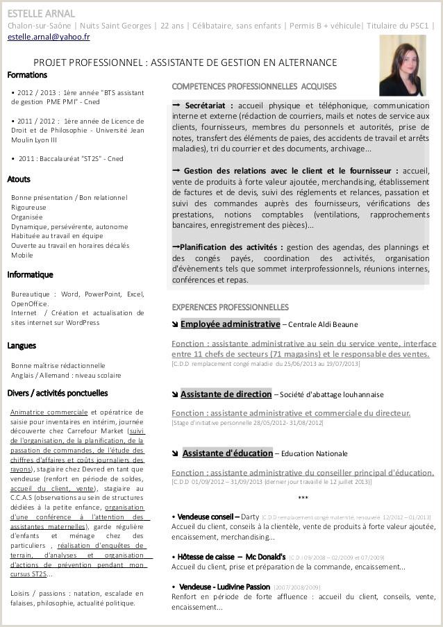 Exemple Modele De Cv Pour Stage Iulitte