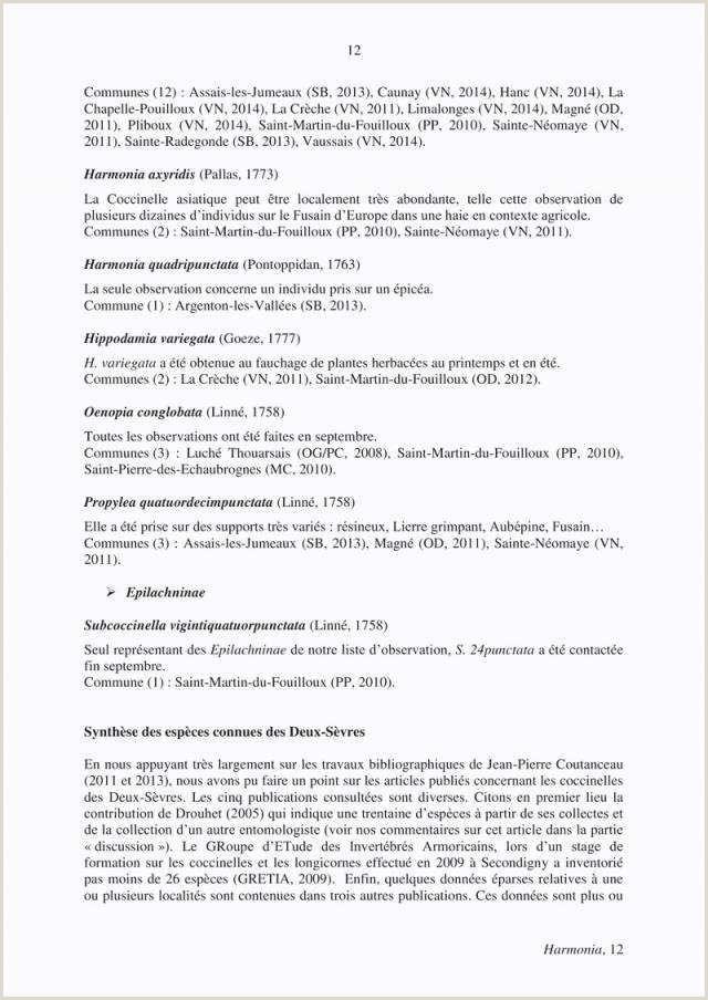 Exemple De Cv En Anglais Pour Stage Lettre De Cv Pour Stage 3eme 78 Modele De Lettre De
