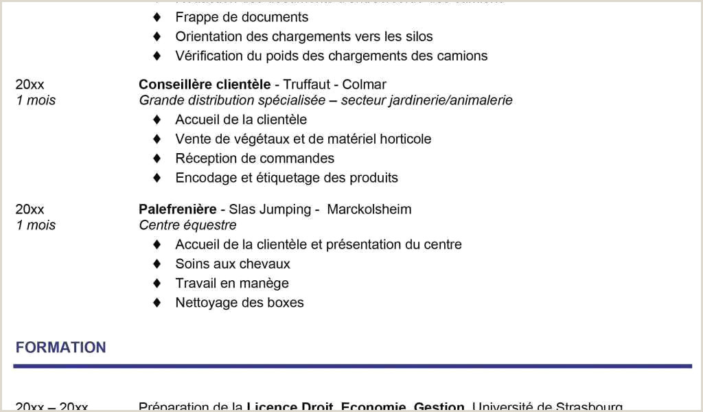 Exemple De Cv En Arabe 48 Exemple Cv Alternance Xenakisworld