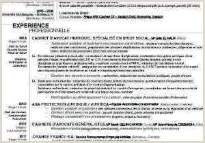 Exemple De Cv Luxembourg Agréable Cv Directeur De Projet