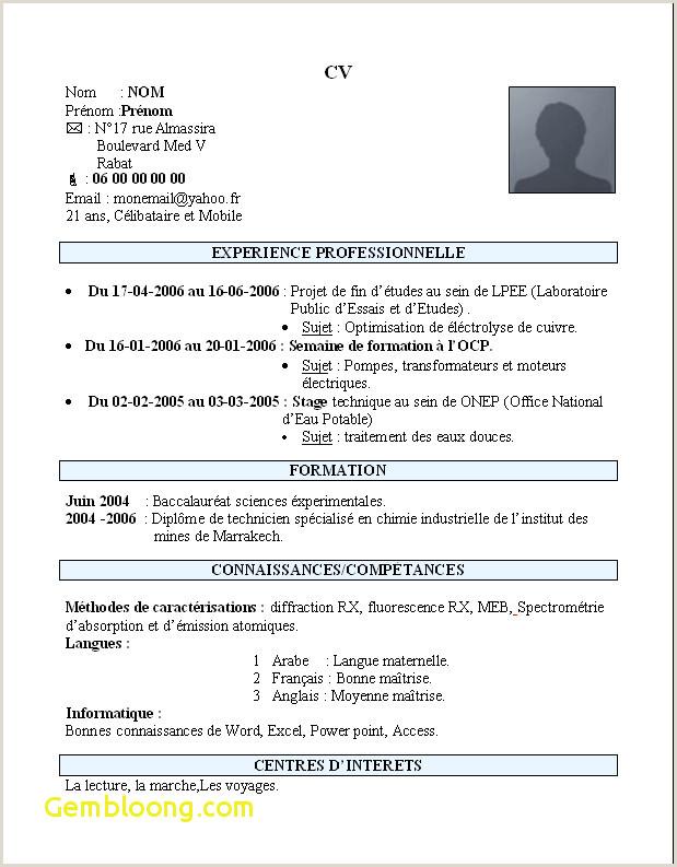 Exemple De Cv étudiant En Pdf 15 Exemple De Cv Simple Pour étudiant