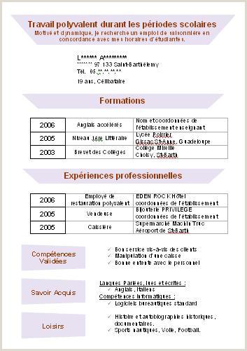 Exemple De Cv Francais Pour Etudiant Cv Type Emploi Saisonnier