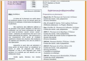 Exemple De Cv Gratuit En Ligne 45 Simple Mon Cv En Ligne Worldindoorlacrosse
