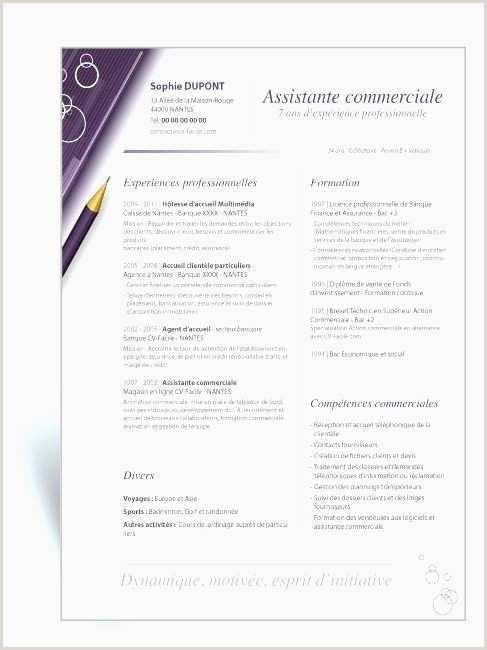 Exemple De Cv Hotesse Daccueil Standardiste Modele Cv Standardiste Hotesse D Accueil