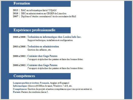 Exemple De Cv In Romana Completat Aepp