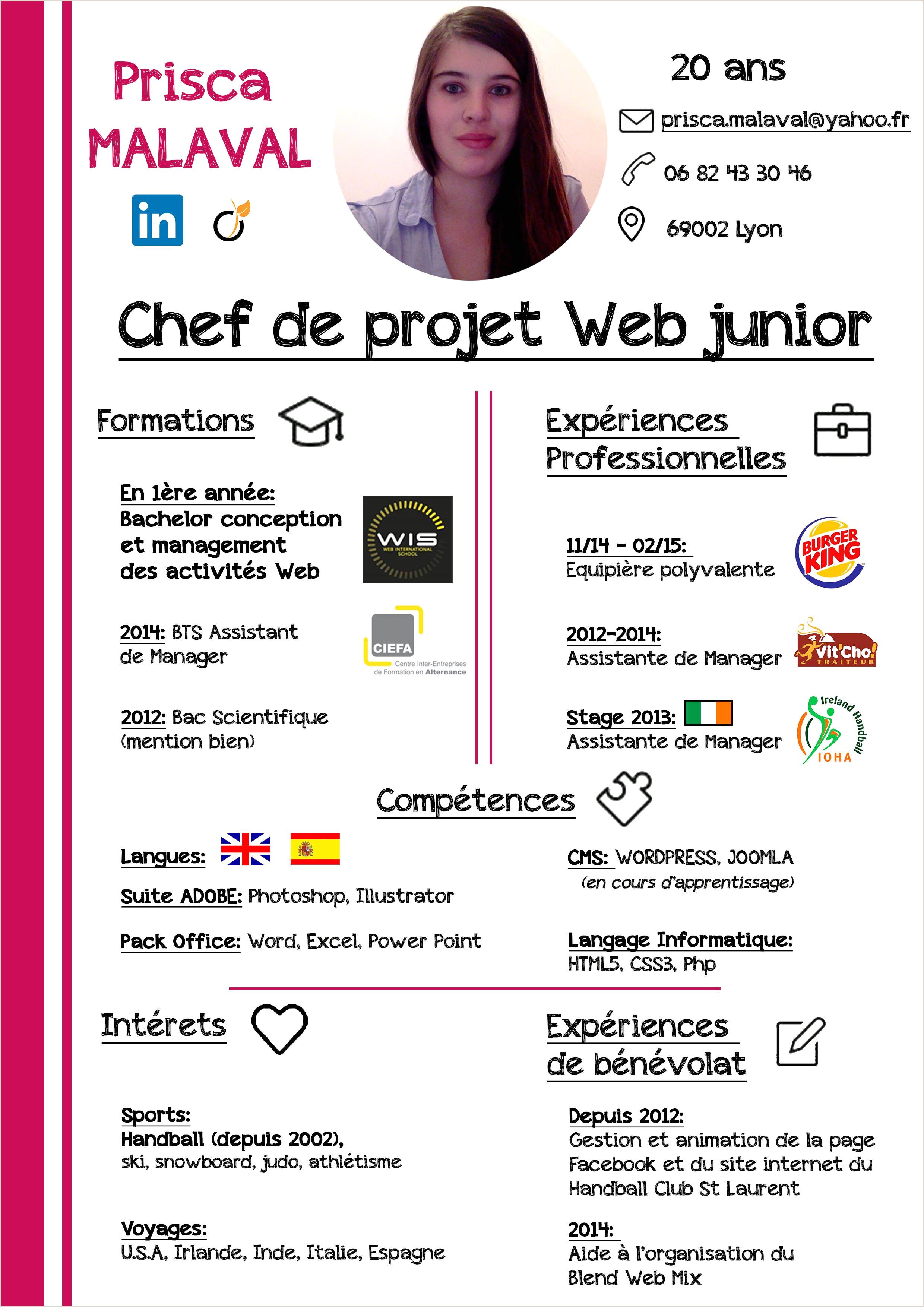 Exemple De Cv Informaticien Pdf Cv Chef De Projet Informatique Gratuit Exemple Cv Chef De
