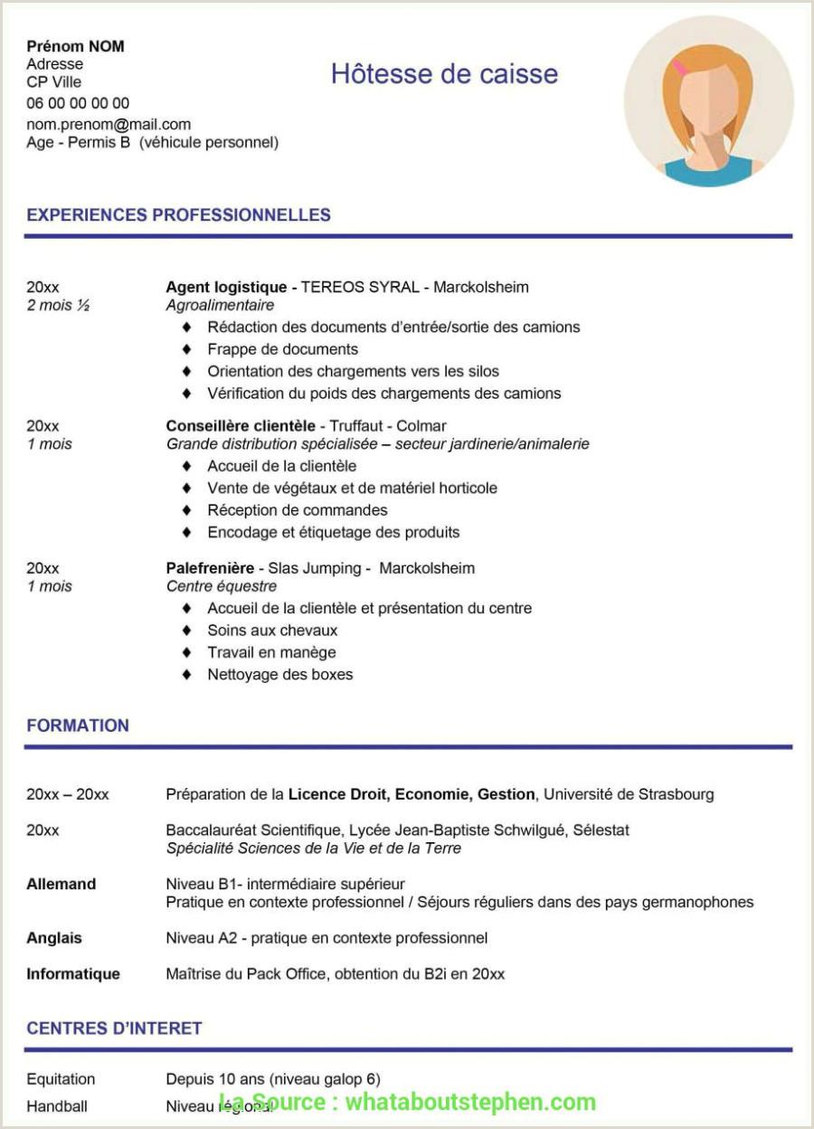 Exemple De Cv Informaticien Pratique Lettre De Motivation Licence Alternance