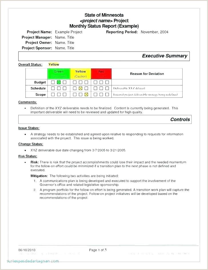 Exemple Cv Interim élégant Xamples Skills A Resume