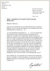 Exemple De Cv Job Dété Bugs Buggy Page 41 Sur 751