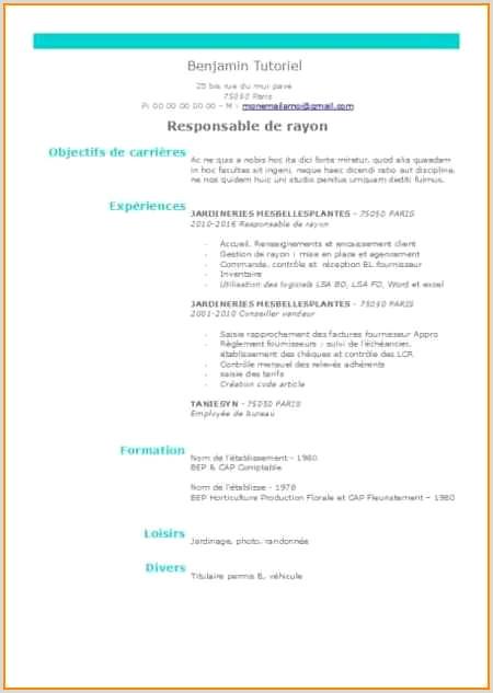Exemple De Cv original Serveuse Beau 15 Mod¨le Cv Lycéen