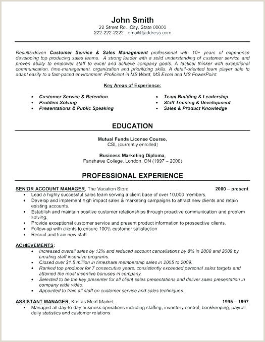 Exemple De Cv Key Account Manager Account Executive Resume Template