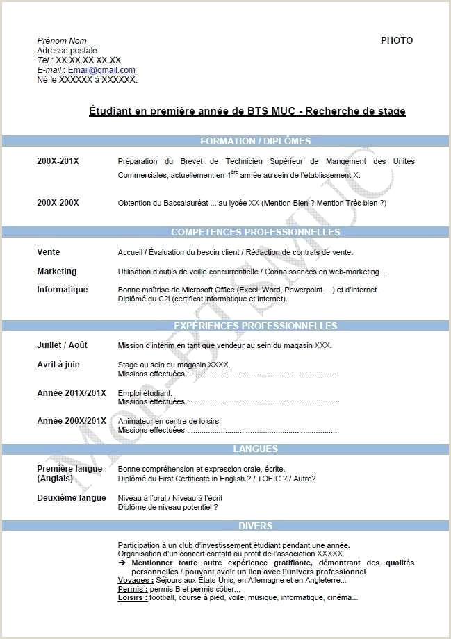 Exemple De Cv Langues Fre De Contrat En Alternance échantillon Modele Cv Gratuit