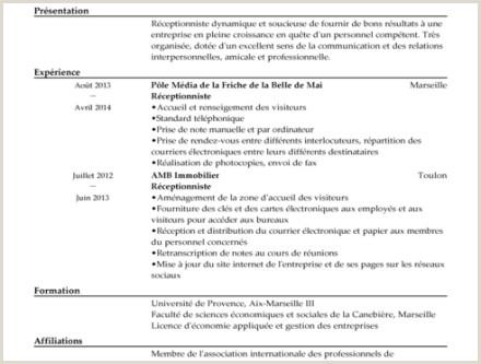 Exemple De Cv Licence Economie Et Gestion Hostal Dels Trabucayres